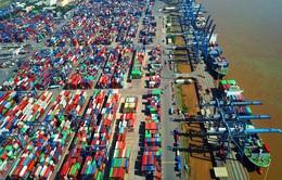 Doanh nghiệp kiến nghị TP Hồ Chí Minh hoãn thu phí hạ tầng cảng biển
