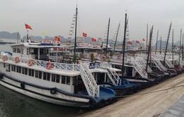 """""""Sóng thần"""" COVID-19 """"nhấn chìm"""" tàu du lịch vịnh Hạ Long"""