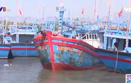 Kiểm soát mất tín hiệu thiết bị giám sát hành trình tàu cá
