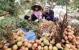 Đề nghị Trung Quốc tạo điều kiện tiêu thụ nông sản Việt Nam