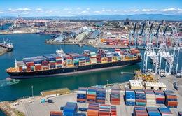 Cước vận chuyển container cao kỷ lục