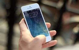 iPhone đời cũ vẫn chưa bị Apple bỏ rơi