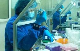 Bộ Y tế yêu cầu Hà Tĩnh tăng cường quản lý, điều trị ca bệnh COVID-19