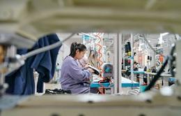 """Cước vận tải biển tăng """"phi mã"""", Nhân dân tệ đạt đỉnh: Doanh nghiệp Trung Quốc lao đao"""