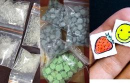 Ma túy gồm những loại gì? Tác hại của chúng nguy hiểm ra sao?