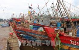 Bão số 2 gây ngập úng diện rộng, nhiều tàu cá hư hỏng