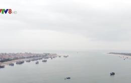 Quảng Bình: Nỗ lực gỡ thẻ vàng EC cho ngư dân