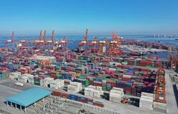 Vận tải biển nguy cơ tiếp tục rơi vào khủng hoảng, sức ép lạm phát gia tăng