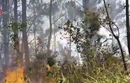 Trung Bộ cảnh báo cháy rừng cấp 4