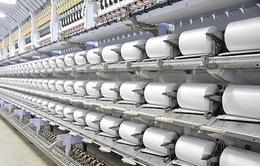 Hoa Kỳ kết luận chống bán phá giá sợi dún polyester Việt Nam
