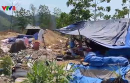 Bùng phát khai thác vàng trái phép tại Bồng Miêu
