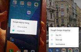 Ứng dụng Google gặp sự cố khiến nhiều người dùng Android gặp lỗi lạ