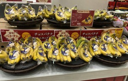 Vải, chuối, xoài đông lạnh Việt được bán trong hàng trăm siêu thị tại Nhật Bản