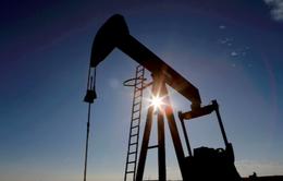 Nhu cầu mạnh đẩy giá dầu lên mức cao nhất kể từ tháng 10/2018