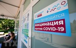 Nga bắt đầu cung cấp mã QR cho khách hàng