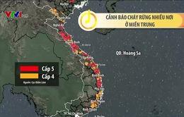 Nắng nóng liên tục, Đà Nẵng dự báo cháy rừng ở cấp cực kỳ nguy hiểm