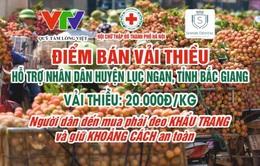 Hỗ trợ nhà nông tiêu thụ vải thiều Bắc Giang