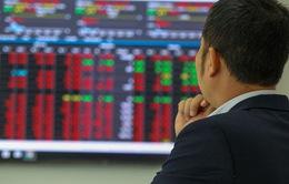 Bloomberg: VN-Index chọc thủng mốc 1.500 điểm trước cuối năm 2021