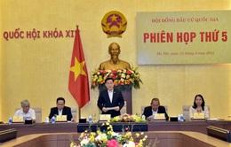 Ngày 10/6, Hội đồng Bầu cử quốc gia họp đánh giá về cuộc bầu cử