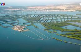 Đầm Thị Nại sắp thành khu du lịch nghỉ dưỡng biển