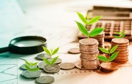 Trái phiếu doanh nghiệp: Lãi suất cao sẽ đi kèm với rủi ro cao