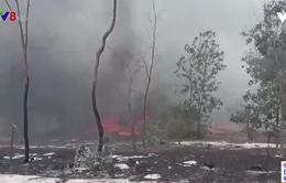 Quảng Nam - Đốt thực bì gây cháy rừng diện rộng