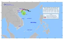 Áp thấp nhiệt đới gây gió giật mạnh ở biển và mưa lớn trên đất liền