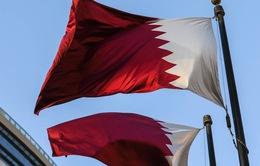 Qatar được xem xét trở thành chặng đua F1 ngay trong năm nay