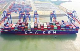 Gánh nặng logistics kéo lùi xuất khẩu của Việt Nam