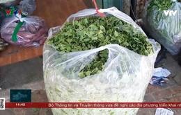 Khánh Hòa ngưng hoạt động chợ truyền thống để tăng cường phòng chống dịch