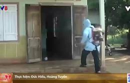 """Đắk Lắk chủ động không để """"dịch chồng dịch"""""""