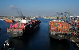 Cước vận chuyển container lại tăng sốc