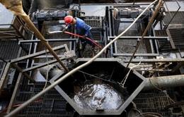 OPEC+ đàm phán thất bại, Mỹ tăng sản lượng để giữ giá