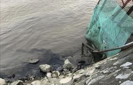 Ninh Bình: Dầu thải đe dọa nguồn nước sạch của 12.000 hộ dân