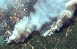Cháy rừng tại Thổ Nhĩ Kỳ lan rộng, số nạn nhân thiệt mạng tăng lên 6 người