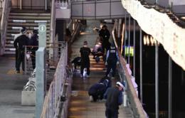 Vụ người Việt bị sát hại ở Osaka: Nhật Bản bàn giao thi thể nạn nhân