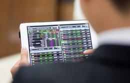 Cổ phiếu bất động sản nhuốm sắc đỏ, VN-Index giảm điểm