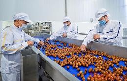 Doanh nghiệp cần làm gì để duy trì chuỗi cung ứng nông sản?