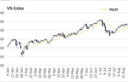 Nhà đầu tư chứng khoán hạn chế việc bắt đáy và mở thêm vị thế mua mới