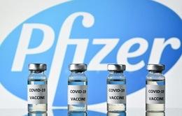 Cảnh báo khả năng xuất hiện chủng virus kháng vaccine COVID-19