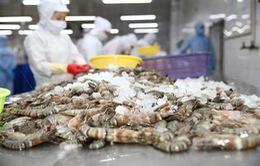 Xuất khẩu tôm - Điểm sáng của ngành thủy sản