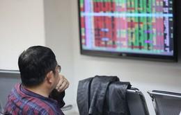 Lực cầu bắt đáy dâng cao, VN-Index thu hẹp đà giảm