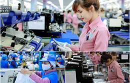 Tái khởi động nền kinh tế, mô hình sản xuất nào cho doanh nghiệp?