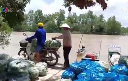 Nông dân Cù lao Mây góp rau củ gửi TP Hồ Chí Minh