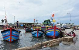 Bão số 5 di chuyển chậm, đổ bộ vào đất liền từ Thừa Thiên-Huế đến Quảng Ngãi