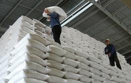 Mua thêm gạo dự trữ quốc gia hỗ trợ người dân gặp khó khăn do COVID-19
