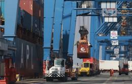Doanh nghiệp kiên trì khơi thông chuỗi logistics