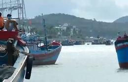 Khánh Hòa: Mở cửa lại cảng Hòn Rớ sau gần 3 tháng đóng cửa phòng chống Covid
