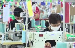 Thanh Hoá phòng chống dịch trong tình hình mới nhằm khôi phục sản xuất