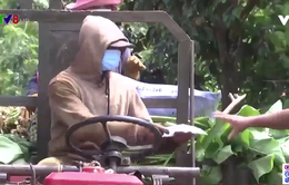 Đắk Lắk huy động lực lượng cơ sở tham gia phòng chống dịch